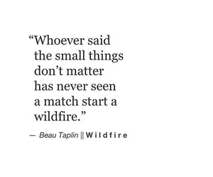 quotes, beau taplin, and wildfire image