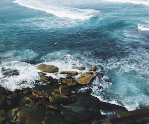 indie and sea image