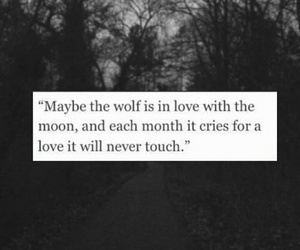 in love, moon, and wolf image
