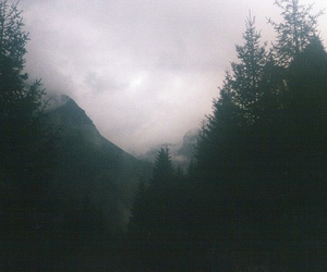 mountains, fog, and forest image