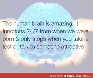 brain, fact, and funny image