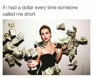 money and short image