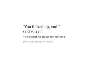 breakup, idiot, and quotes image