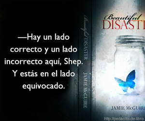 beautiful disaster, book, and frase image