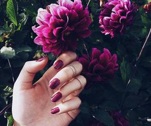 fashion, flowers, and nails image