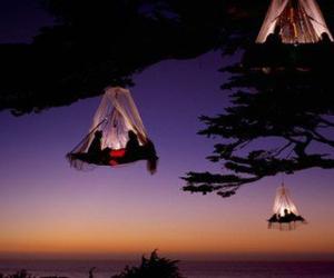 tree, night, and couple image