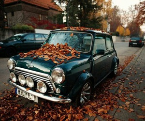car, autumn, and vintage image