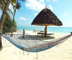 beach, exotic, and hammock image