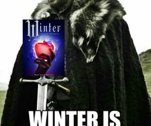 funny, winter, and meme image