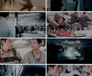 the maze runner, tmr, and the scorch trials image