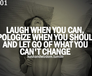 quote, apologize, and laugh image