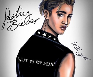 hayden williams, what do you mean, and justin bieber image
