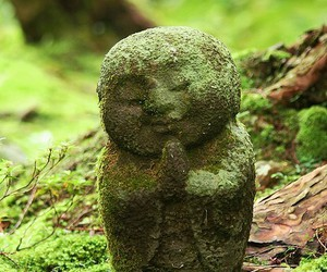 Buddha, green, and nature image