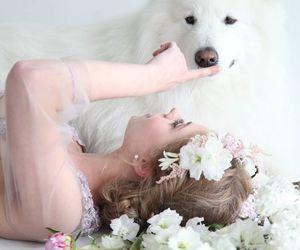 beautiful, dog, and wedding image