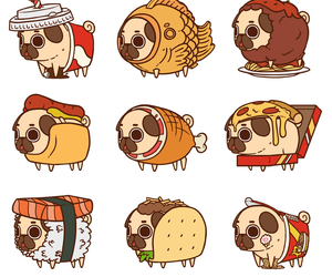 pug and stickers image