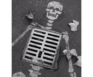 skeleton, cool, and creativity image