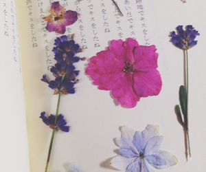 flower, word, and book image