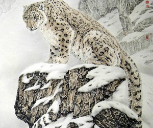 animal, snow, and leopard image