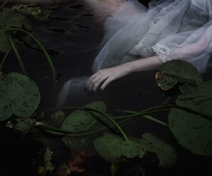 dead, ophelia, and plants image