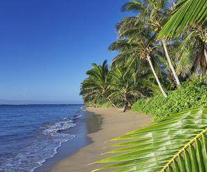 exotic and paradise image