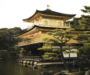 gold, japanese, and house image