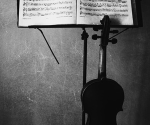 cello, life, and music image