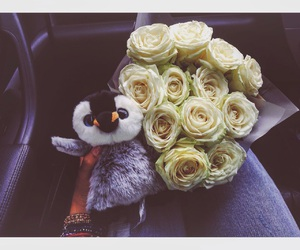 inlove, penguin, and roses image
