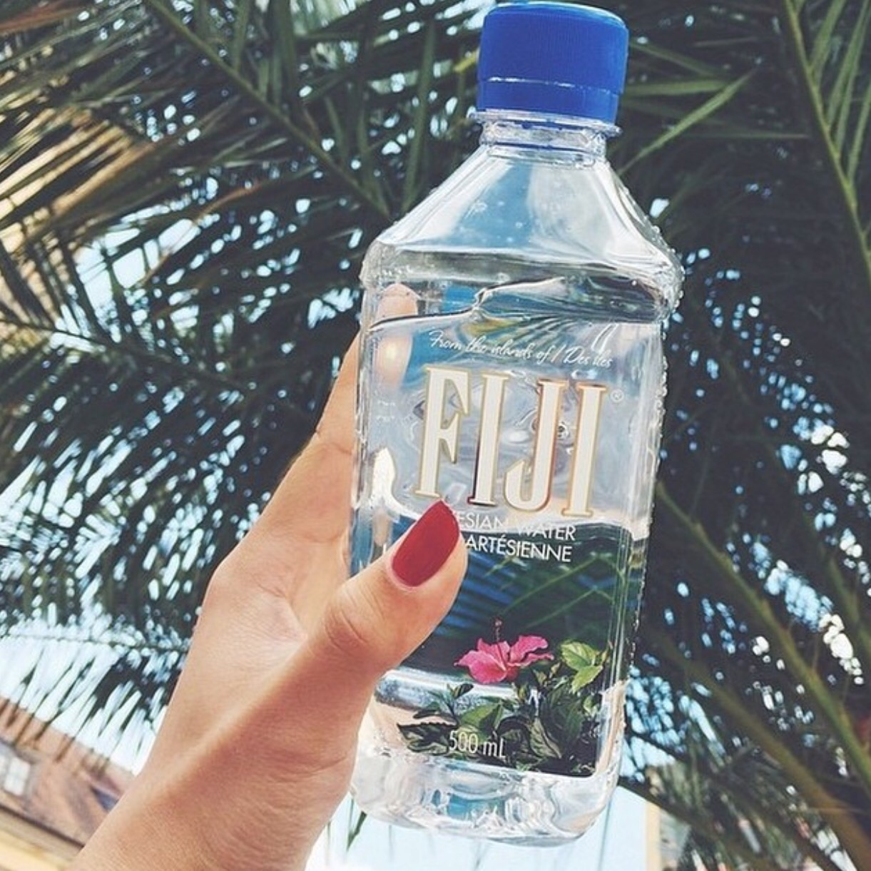 Image About Nails In Fiji Water By Jada Drake
