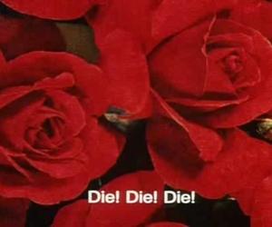 rose, die, and red image