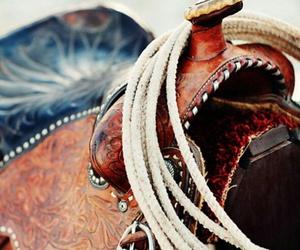amazing, country, and saddle image
