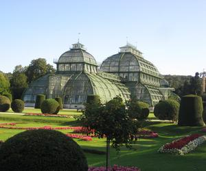 architecture, austria, and greenhouse image