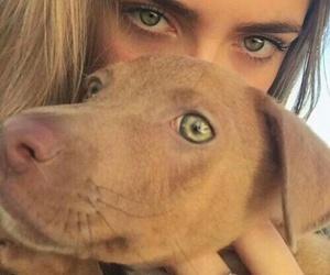 dog, girl, and eyes image