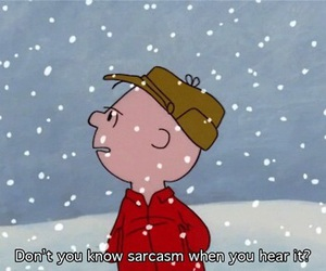 sarcasm, charlie brown, and text image
