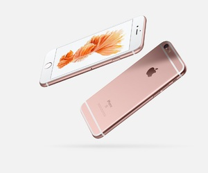 apple, gold, and rose image