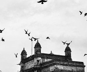 amazing, mumbai, and travel image