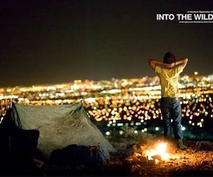 into the wild, light, and city image