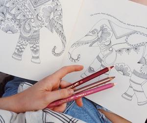 Animal kingdom, artsy, and colours image