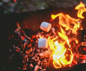 autumn, marshmallow, and fire image
