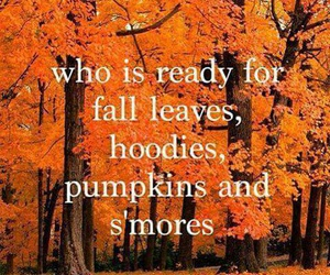 fall, leaves, and pumpkin image