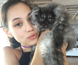 cat, girl, and pretty image