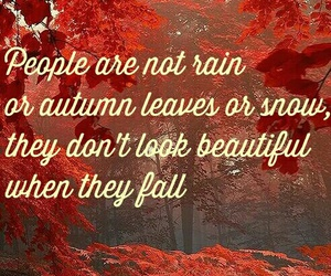 autumn, leaves, and people image
