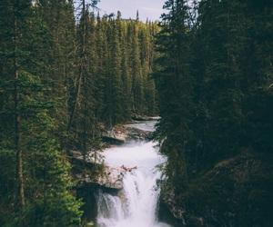 river and wilderness image