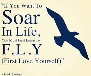 fly, quotes, and soar image