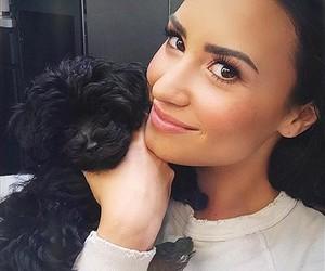 demi lovato, demi, and dog image