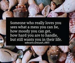 moody, qoute, and scallops image