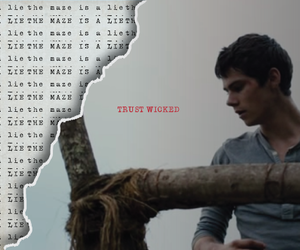 thomas, the maze, and the maze runner image