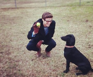 dog and grant gustin image