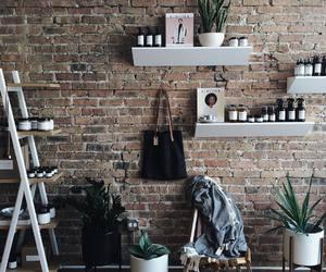 boho, plants, and style image