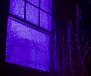 purple and dark image