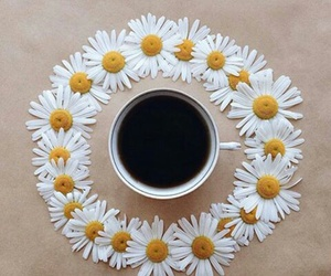coffee, morning, and follow image